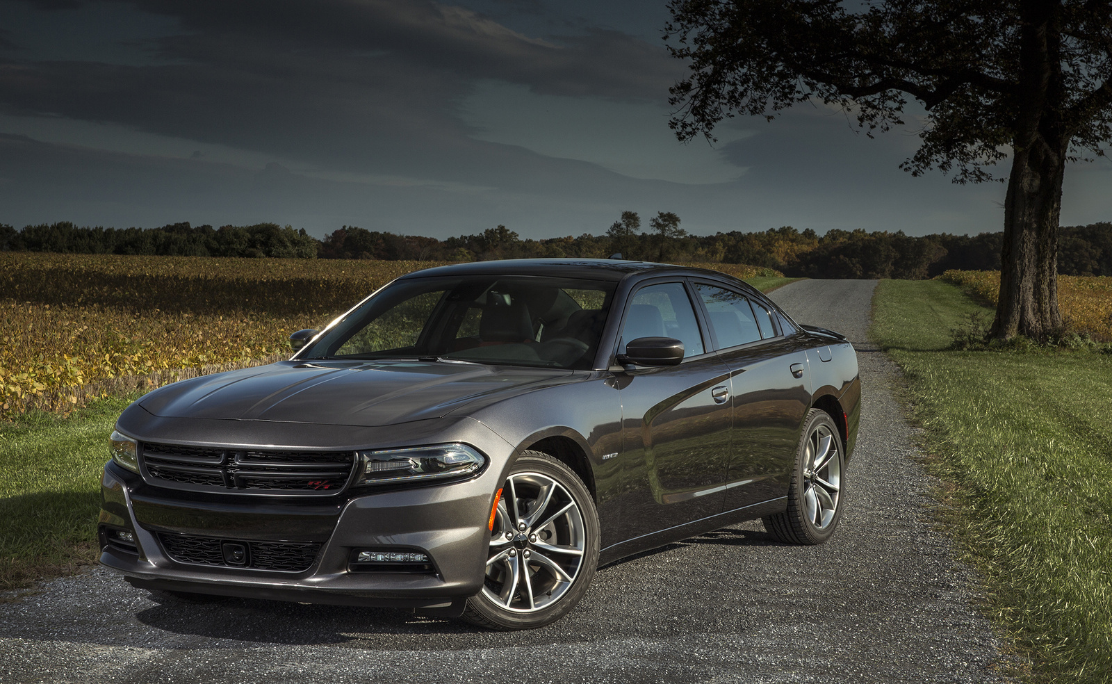 2016 dodge charger for sale in your area cargurus. Cars Review. Best American Auto & Cars Review