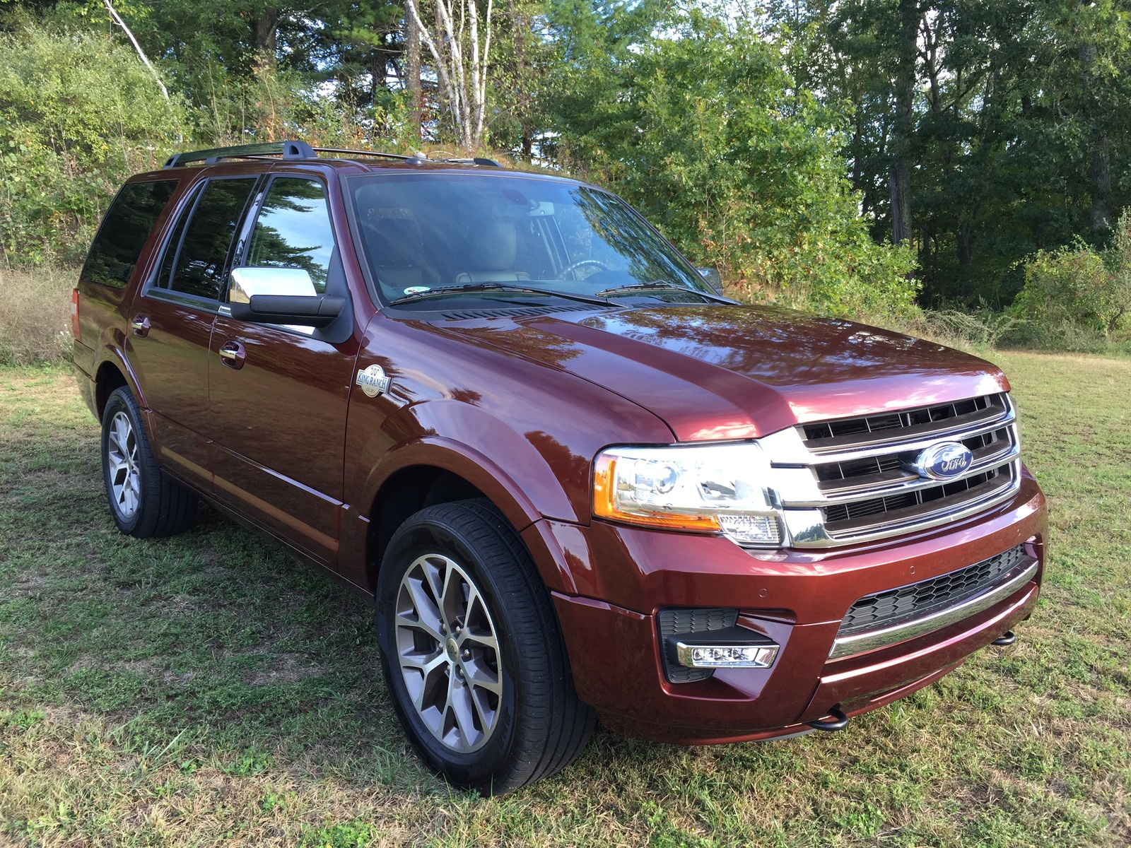 2015 ford expedition overview cargurus