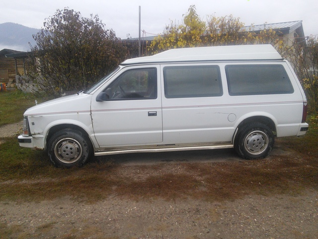 Picture of 1988 Dodge Caravan