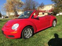 Picture of 2008 Volkswagen Beetle S Convertible, exterior, gallery_worthy