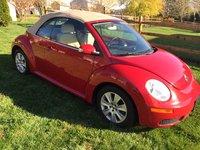 Picture of 2008 Volkswagen Beetle S Convertible, exterior