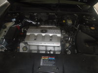 Picture of 1999 Cadillac Seville STS, engine