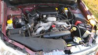 Picture of 2009 Subaru Forester 2.5 X, engine, gallery_worthy
