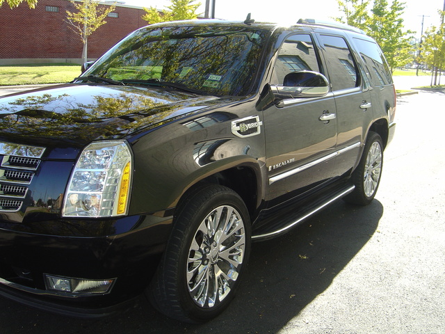 picture of 2009 cadillac escalade hybrid 4wd exterior. Cars Review. Best American Auto & Cars Review