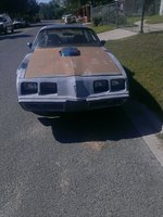 Picture of 1981 Pontiac Firebird Trans Am