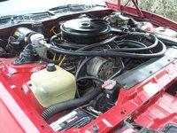 Picture of 1984 Pontiac Firebird Trans Am, engine