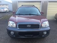 Picture of 2003 Hyundai Santa Fe GLS AWD, exterior