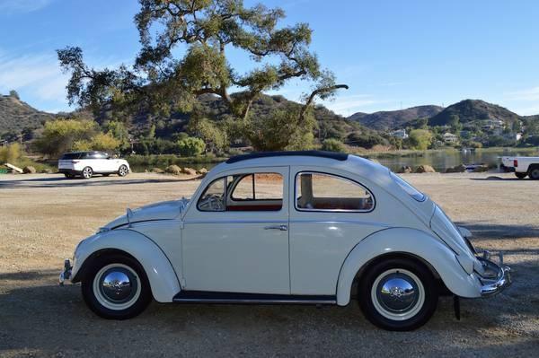 Picture of 1960 Volkswagen Beetle, exterior, gallery_worthy