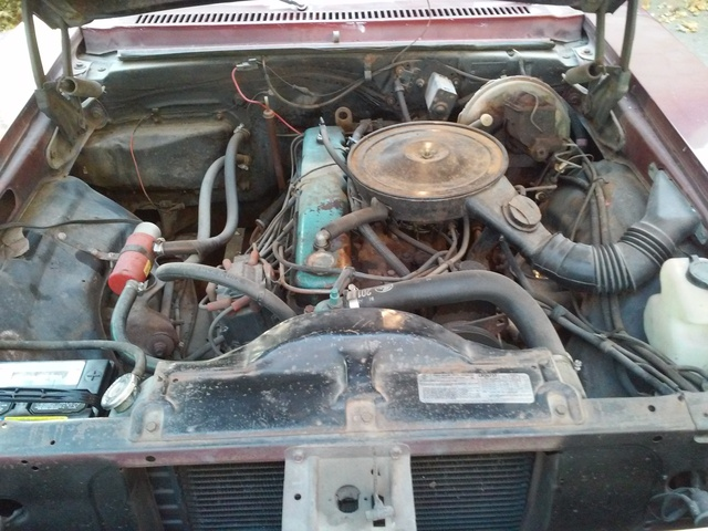 Picture of 1978 Chevrolet Nova, engine