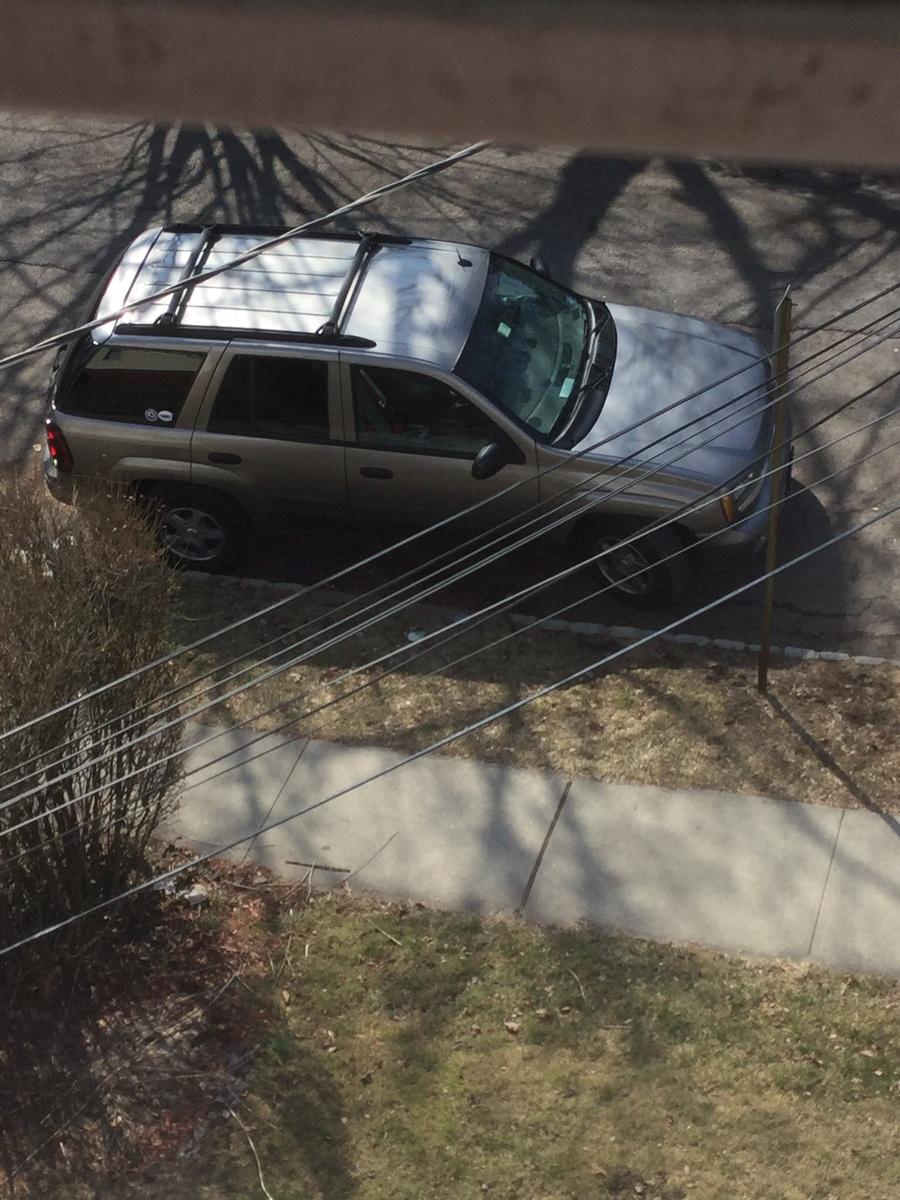 Chevrolet TrailBlazer Questions - My 05 trailblazer won't go