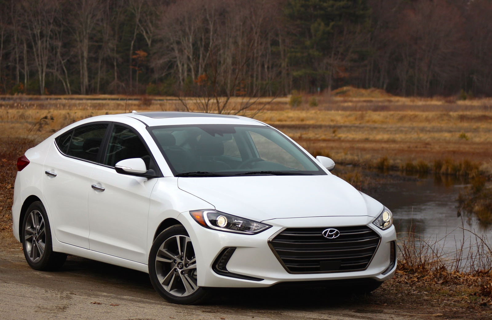 New 2015 2016 2017 Hyundai Elantra For Sale Cargurus