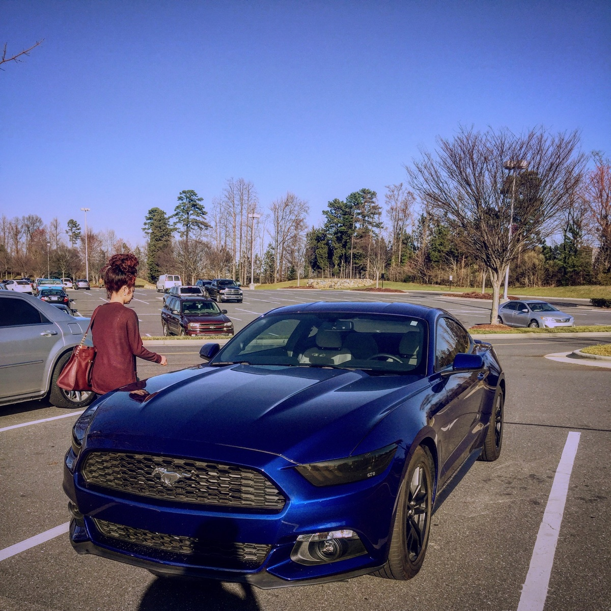 New Ford Vehicles For 2016: 2015 / 2016 / 2017 Ford Mustang For Sale In Your Area