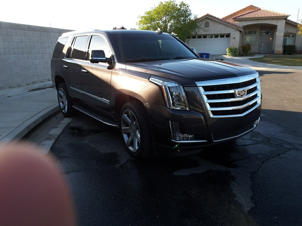 2016 cadillac escalade for sale in your area cargurus. Black Bedroom Furniture Sets. Home Design Ideas