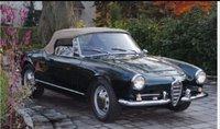 1965 Alfa Romeo Giulia Overview
