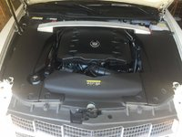 Picture of 2011 Cadillac STS Luxury, engine