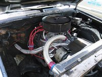 Picture of 1982 Chevrolet S-10 STD Standard Cab SB, engine, gallery_worthy