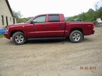 Picture of 2010 Dodge Dakota Bighorn/Lonestar Crew Cab 4WD, exterior, gallery_worthy