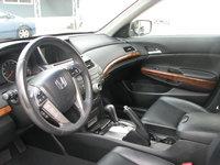 Picture of 2012 Honda Accord EX-L V6, interior