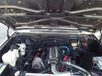 Picture of 1981 Chevrolet C/K 10 Scottsdale Standard Cab SB, engine