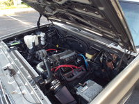 Picture of 1981 Chevrolet C/K 10 Scottsdale Standard Cab SB