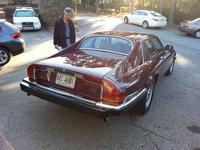 Picture of 1984 Jaguar XJ-S, gallery_worthy