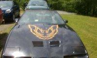 Picture of 1985 Pontiac Firebird Trans Am, exterior