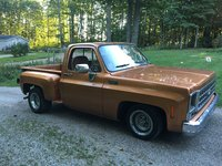 1980 Chevrolet C/K 10 Picture Gallery