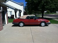 Picture of 1989 Saab 900 Turbo Convertible, exterior, gallery_worthy