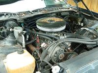 Picture of 1986 Pontiac Firebird SE, engine