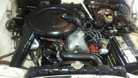 Picture of 1971 Mercedes-Benz 280, engine
