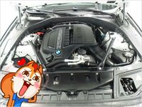 Picture of 2016 BMW 5 Series 535d, engine