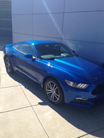 Picture of 2017 Ford Mustang EcoBoost, exterior