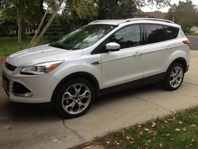 2015 Ford Escape Pictures Cargurus
