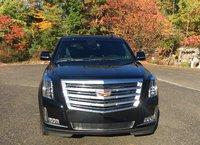 Picture of 2016 Cadillac Escalade ESV Platinum AWD, exterior