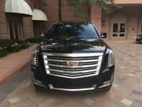 Picture of 2015 Cadillac Escalade Premium, exterior