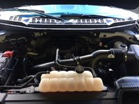 Picture of 2015 Ford F-150 XLT SuperCrew, engine