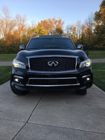 Picture of 2015 Infiniti QX80 Limited, exterior