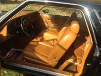 Picture of 1980 Ford Granada, interior