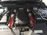 Picture of 2014 Audi RS 5 Convertible, engine