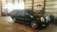 Picture of 2011 Cadillac Escalade ESV Premium AWD, exterior