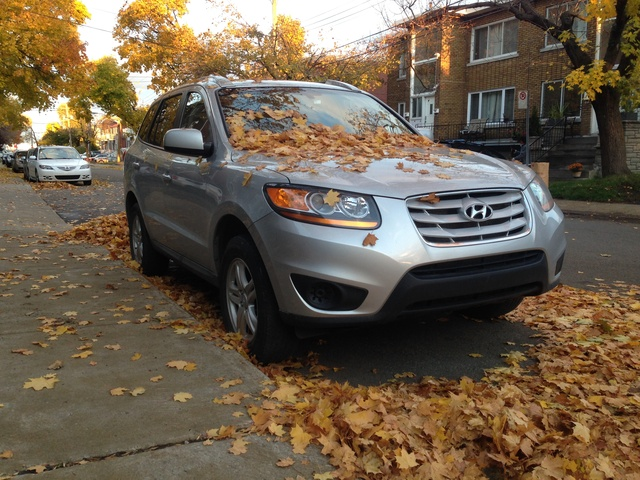 Picture of 2010 Hyundai Santa Fe