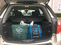 2015 Chevrolet Equinox LS, Cargo net and privacy cover, interior