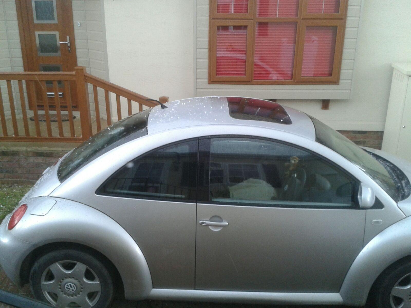 Volkswagen Beetle Questions - Rear End Knock
