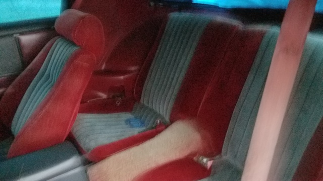 Picture of 1985 Pontiac Firebird STD, interior