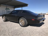 Picture of 1980 Pontiac Firebird Trans-Am, exterior, gallery_worthy