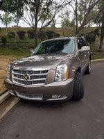 Picture of 2014 Cadillac Escalade Platinum Edition AWD, exterior