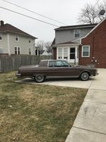 1983 Oldsmobile Eighty-Eight Picture Gallery