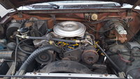Picture of 1982 Ford F-250 XL Standard Cab LB, engine, gallery_worthy