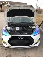 Picture of 2014 Hyundai Veloster Turbo Black Seats, engine