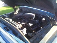 Picture of 1967 Ford F-250, engine, gallery_worthy